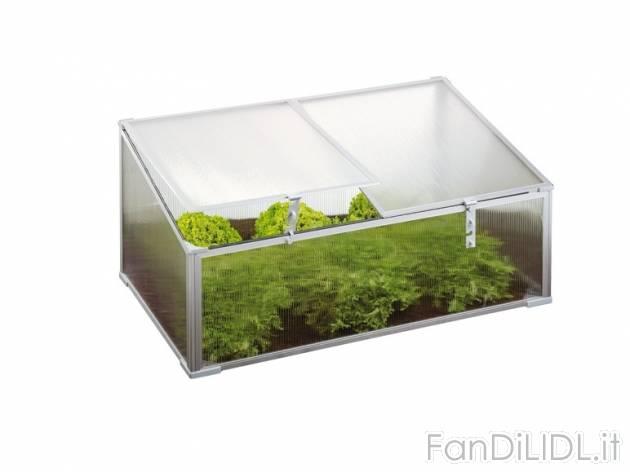 Mini serra da giardino giardino fan di lidl for Mini serra da balcone